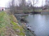 oprava rybníka